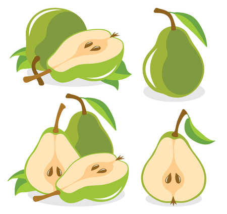 pears: Green pears vector illustration