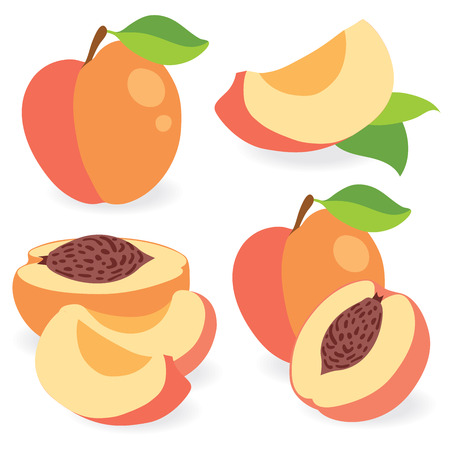 simple cross section: Peaches whole and cut vector illustration Illustration