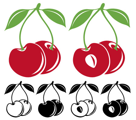 fruit stem: Cherries vector set, in color and black and white