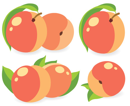 image: Peaches or apricots, collection of vector illustrations Illustration