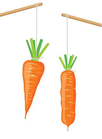 hanging dangling: Carrot on a stick, two vector illustrations Illustration