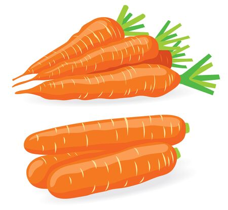 heaps: Two heaps of carrots, vector illustrations