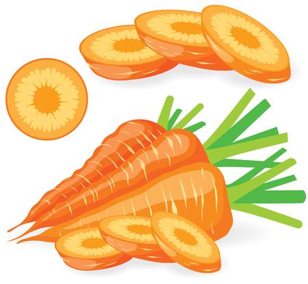 zanahoria: Colección de ilustraciones en rodajas las zanahorias vector Vectores