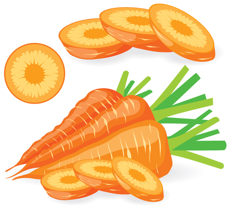 carrot isolated: Collection of sliced carrots vector illustrations