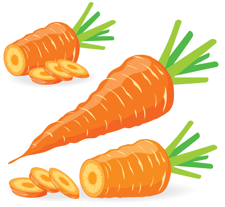 carrot isolated: Sliced carrots, collection of vector illustrations