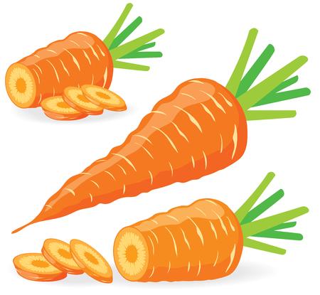 zanahorias: zanahorias en rodajas, colección de ilustraciones de vectores Vectores