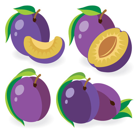 plums: Collection of plums, vector illustration Illustration