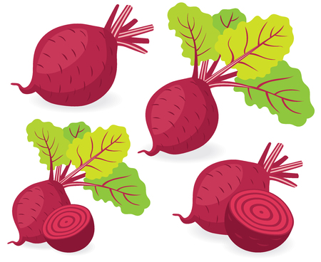 beetroot: Collection of beetroot vector illustrations