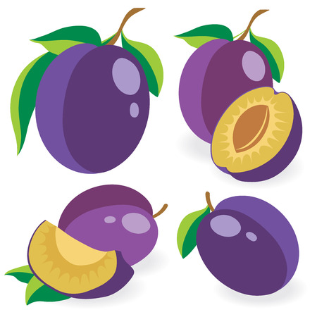 plums: Collection of whole and cut plums, vector illustrations
