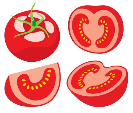 tomato slices: Collection of tomato slices  Illustration