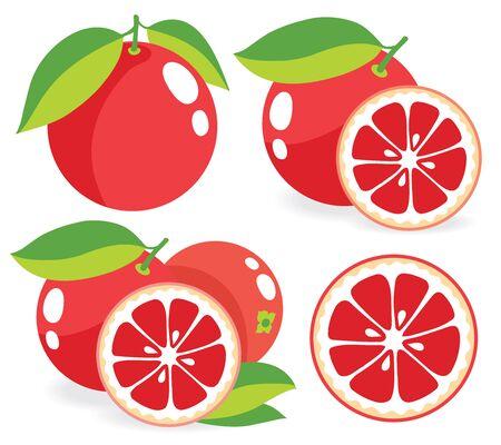 toronja: pomelo rosa, un conjunto de ilustraciones de vectores Vectores