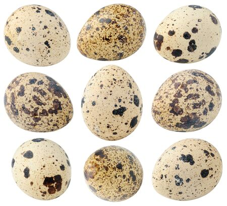 spot the difference: Collection of spotted quail eggs isolated on white with clipping path