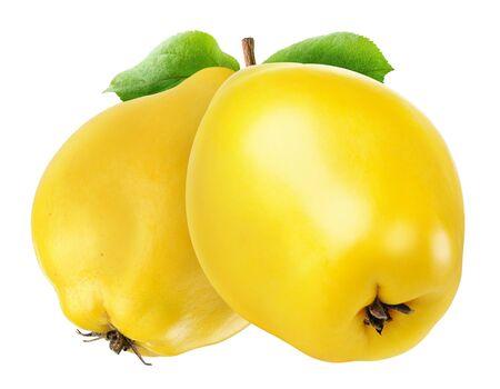 membrillo: Dos frutas de membrillo aisladas en blanco con trazado de recorte