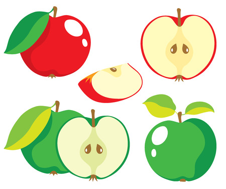 half apple: Collection of red and green apples, vector illustrations