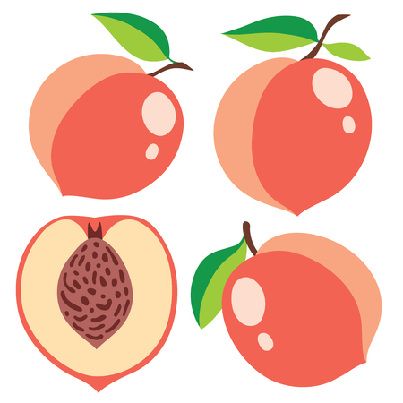 mixed nuts: Collection of pink peaches, vector illustrations Illustration