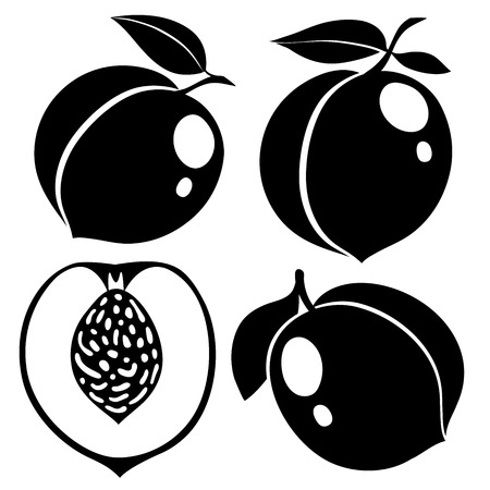 peaches: Collection of black and white peaches, vector illustrations Illustration