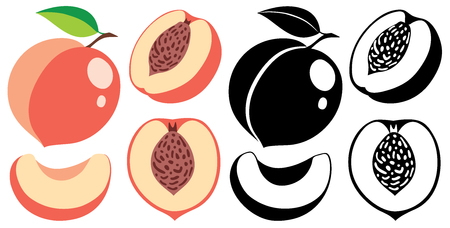Cut and whole peaches in color and monochrome, collection of vector illustrations Ilustração