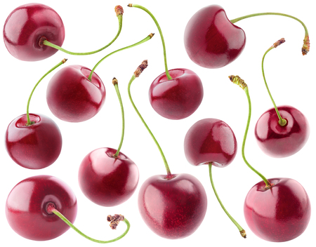 cherry varieties: Isolated cherries. Collection of sweet cherry fruits isolated on white background