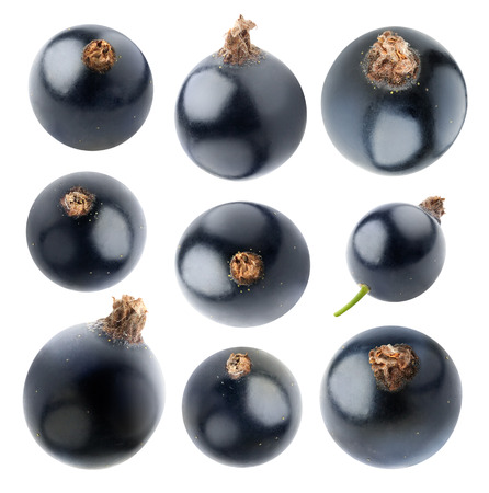 assorted: Isolated blackcurrants. Collection of nine black currant berries of different shapes isolated on white background with clipping path