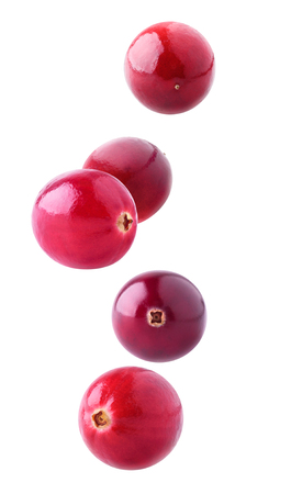 berries: Isolated flying berries. Five falling cranberry fruits isolated on white background Stock Photo