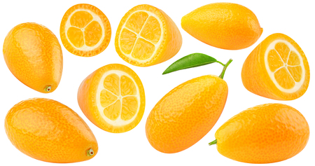 isolated kumquates. Collection of fresh kumquat (fortunella) citrus fruits, whole and cut, isolated on white background