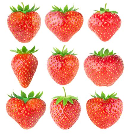 Isolated strawberries. Collection of strawberry fruits of various shapes isolated on white background 写真素材