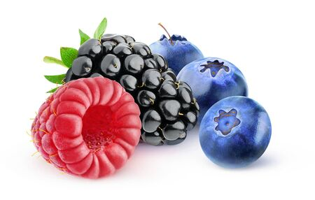 Isolated berries. Blackberry, raspberry and blueberries isolated on white background