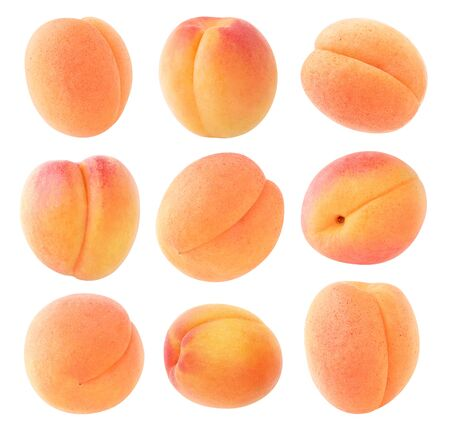 Isolated apricots. Collection of fresh apricot fruits  on white background