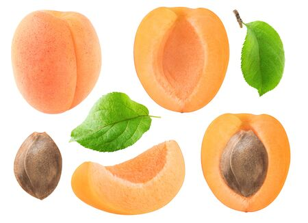 Isolated apricots collection. Whole and cut apricot fruits, leaves and kernel isolated on white background