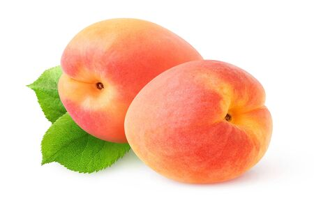 Two pink apricot fruits over leaves isolated on white background