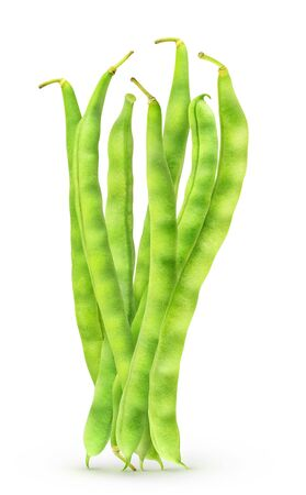 Isolated runner beans. Bundle of raw green beans standing vertical isolated on white background