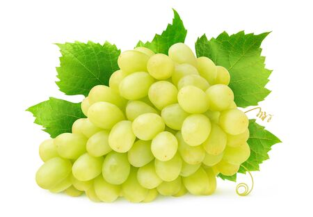 Isolated white grape. Bunch of Thompson seedless grapes with leaves and tendrils isolated on white background