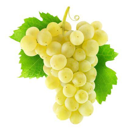 Uva isolata. Grappolo appeso di uva bianca isolato su sfondo bianco con tracciato di ritaglio