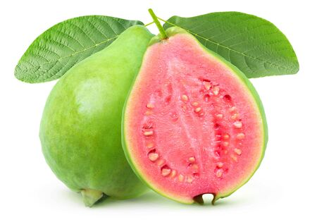 Isolated guava. One whole green guava fruit and a half with pink flesh on a branch with leaves isolated on white background