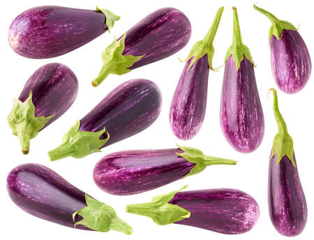 Isolated aubergine collection. 11 raw purple eggplants of different shapes isolated on white background