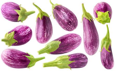 Isolated purple eggplants. Collection of 10 fresh aubergines isolated on white background