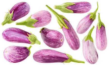 Collection of pink aubergines isolated on white background