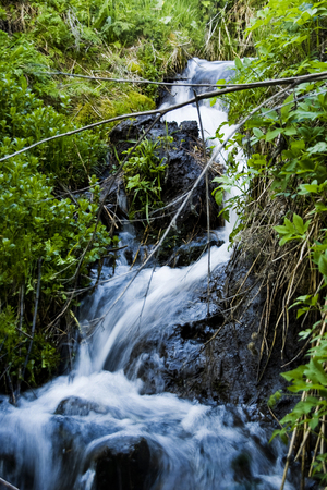 dampen: Small falls in wood Stock Photo