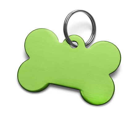 Blank Metal Bone Dog Tag With Ring Isolated on White Background. 写真素材