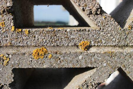 concrete: Concrete