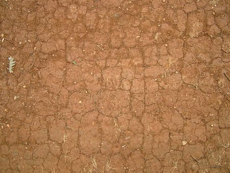 soli: Red spain Soil with cracking and dry stalk Stock Photo