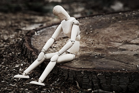 longing: a wooden model sitting on the stump