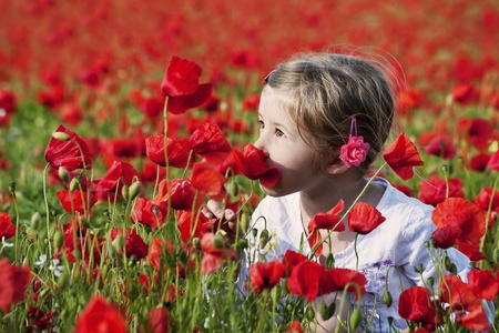 poppy leaf: young girl on the beautiful poppy field