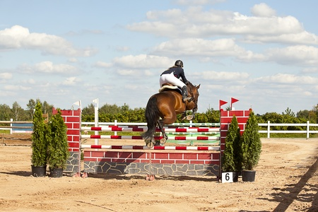 horse jumping high over the high hurdle photo