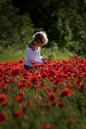 małe słodkie dziewczyny na czerwonym polu maku