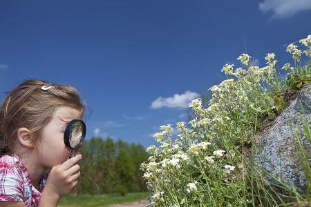 schoolkid search: little girl with magnifying glass checking flowers