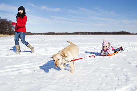 girl sledding with dog in winter scene photo