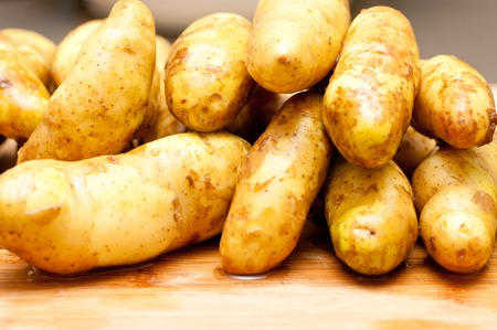 fingerling: fingerling potatoes, farm to table ethical non gmo food Stock Photo