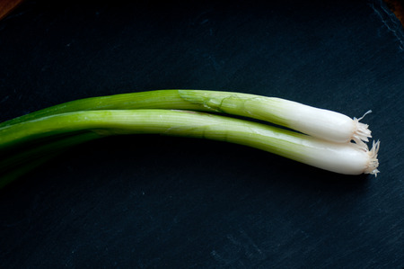 bulb and stem vegetables: farm fresh green onions on a slate board Stock Photo