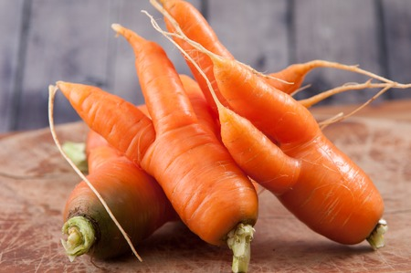 bent: farm fresh ugly carrots bent and twisted